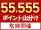 エントリーで55,555ポイント山分けキャンペーン